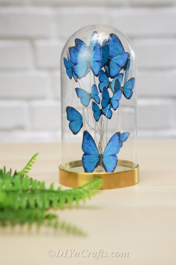 Butterfly jar with blue butterflies