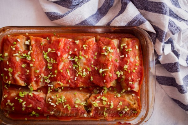 Tasty stuffed cabbage rolls with homemade tomato sauce