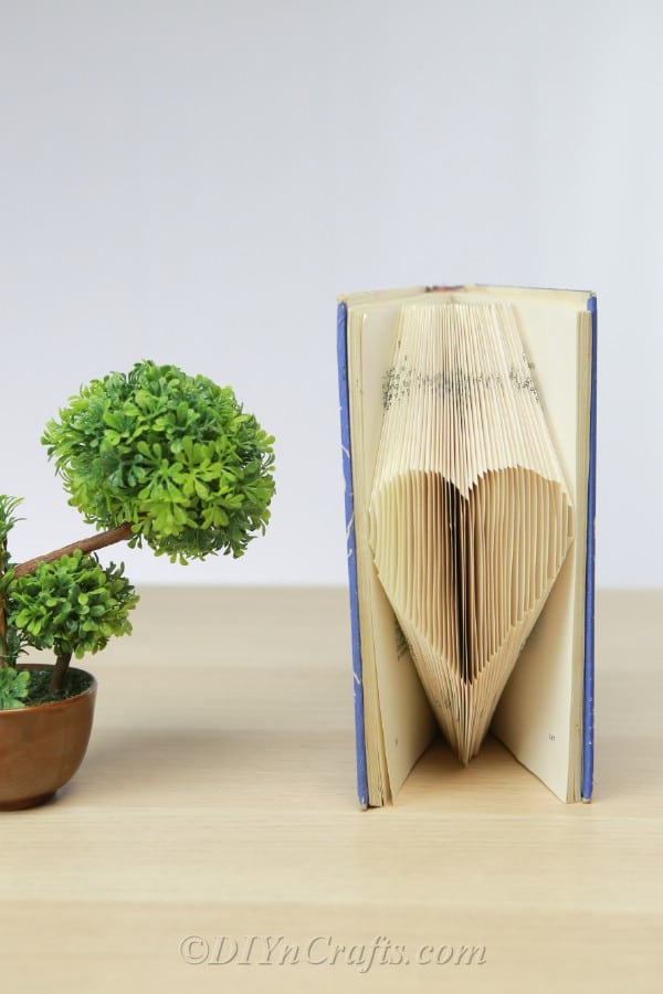 Book heart beside a small plant