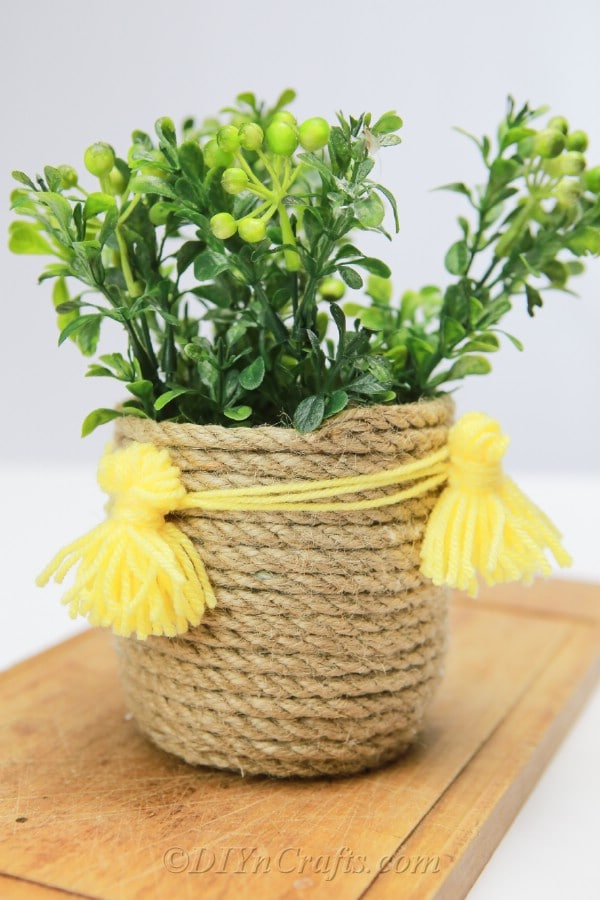 Close up image of rope basket with plants