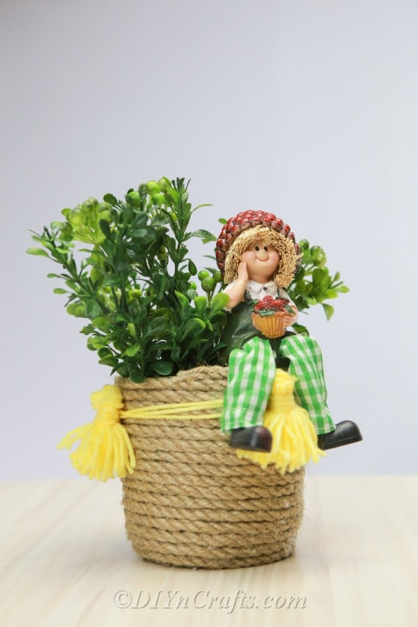 Rope basket with plant inside