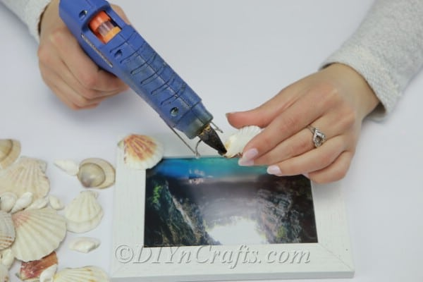 Gluing seashells onto a picture frame