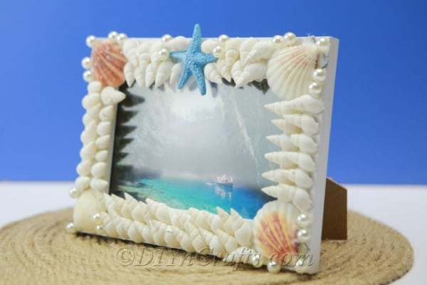 Seashell covered picture frame side view
