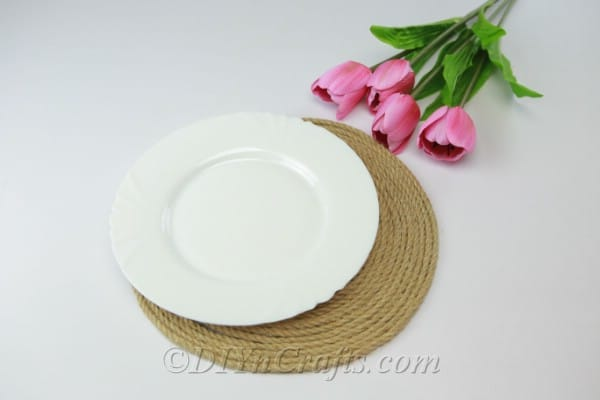 Placemat with a plate to measure the size