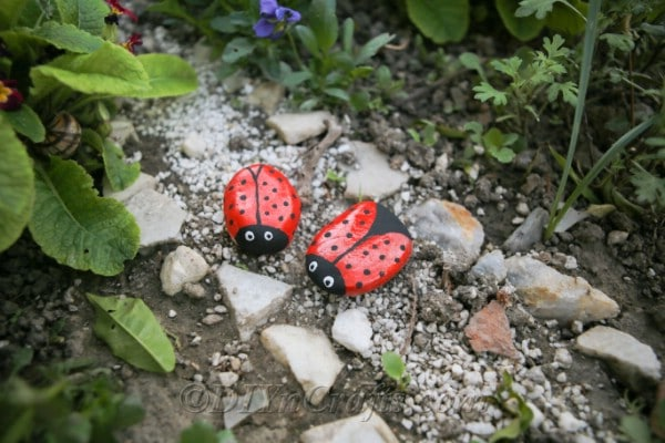 Painted ladybug stones on a garden pathway.