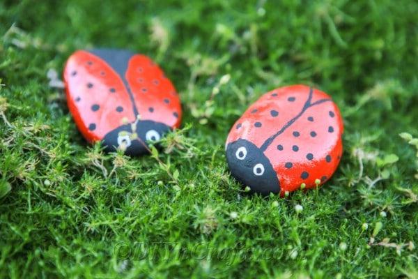 Two ladybug rocks in the garden