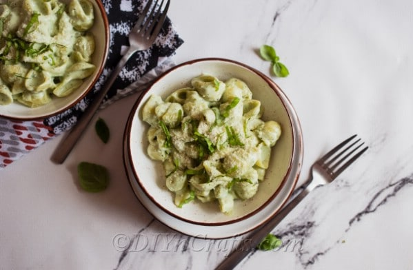 Pasta shells with blue cheese