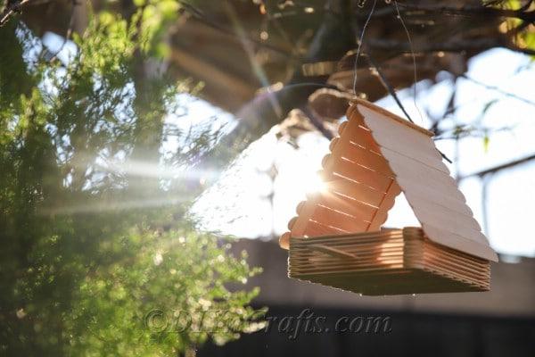 Hang your bird feeder to enjoy.