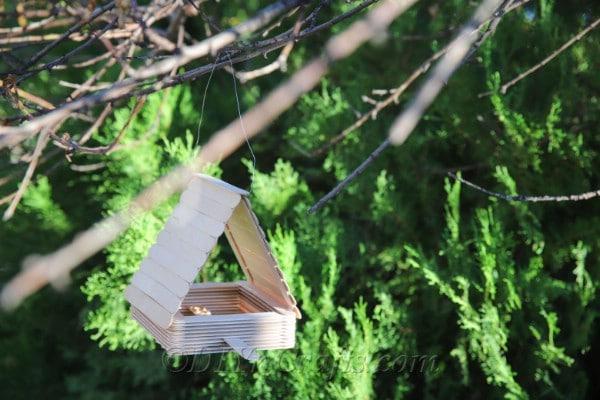 You can make a DIY bird feeder out of craft sticks.