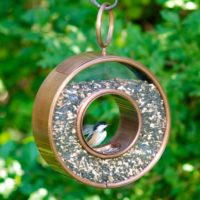 Circle Fly-Thru™ Bird Feeder - Copper Finish