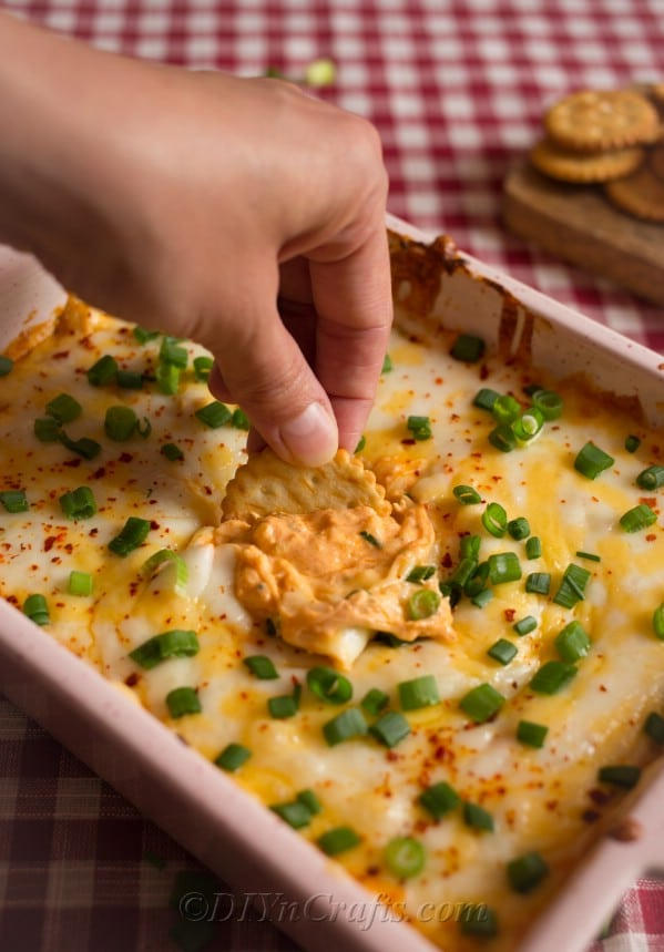Easy Buffalo Chicken Dip being served with a cracker