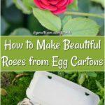 diy egg carton roses p