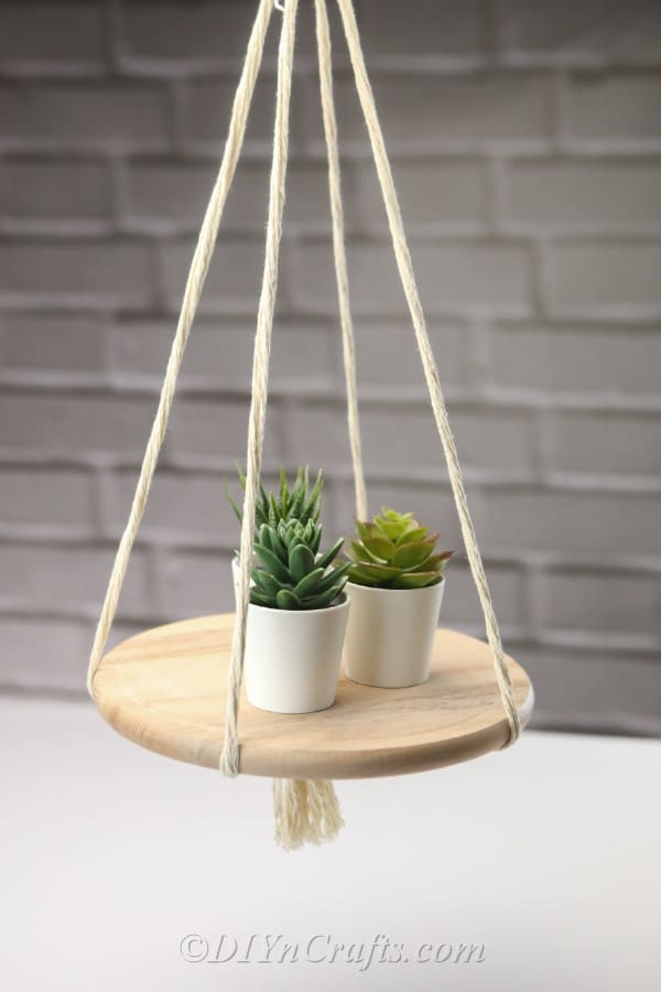 A DIY hanging shelf with three succulent plants on it.
