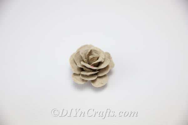 You have now created a rose out of an egg carton.