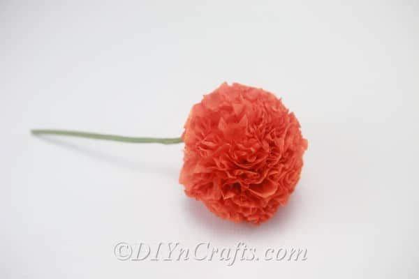 A completed tissue paper ball flower rests against a white backdrop.