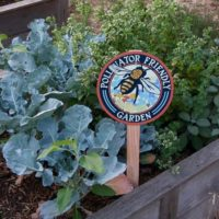 Pollinator Friendly Bee - Garden Sign