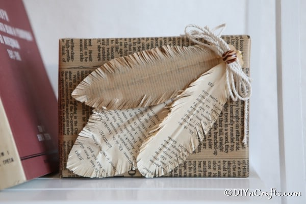 Decorative feathers attached to a newsprint wrapped box