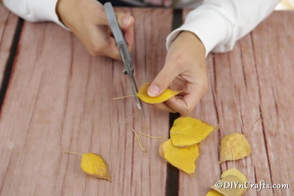 Trimming leaves for fall lantern craft