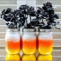 Fall mason jar 3 pack