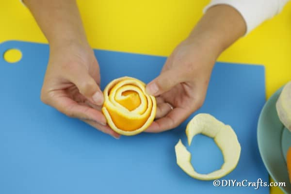Begin wrapping the orange peel to create a flower appearance