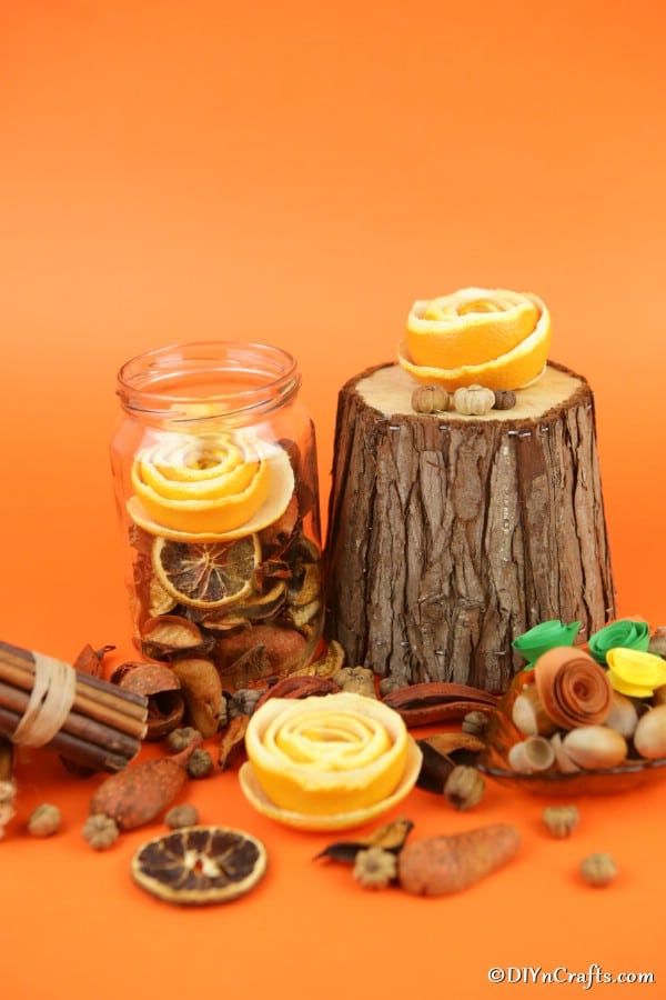 Orange flowers displayed in front of an orange background and sitting on tree trunk pieces