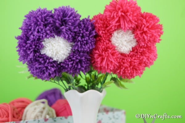 Up close picture of pink and purple pom pom flowers