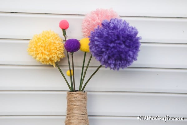 Pom pom flowers displayed against a white wall