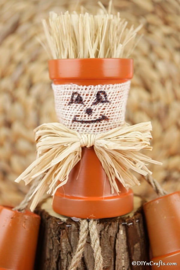 Up close picture of the face and body of a scarecrow flower pot person