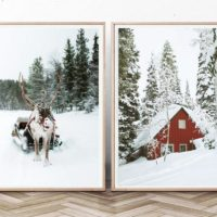 Reindeer Print Winter Set