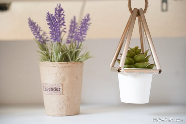 Succulent planter hanging in a window next to lavender plant