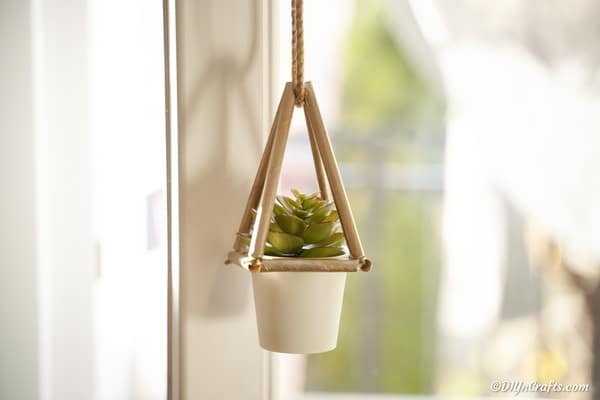 Succulent planter hanging in a window