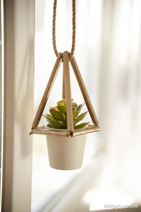 A homemade succulent planter hanging near a window