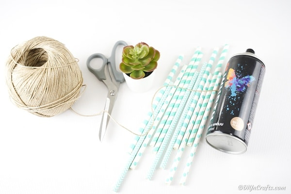 Supplies for making a paper straw succulents planter