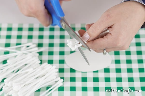 Cutting cotton swabs in half for lamb