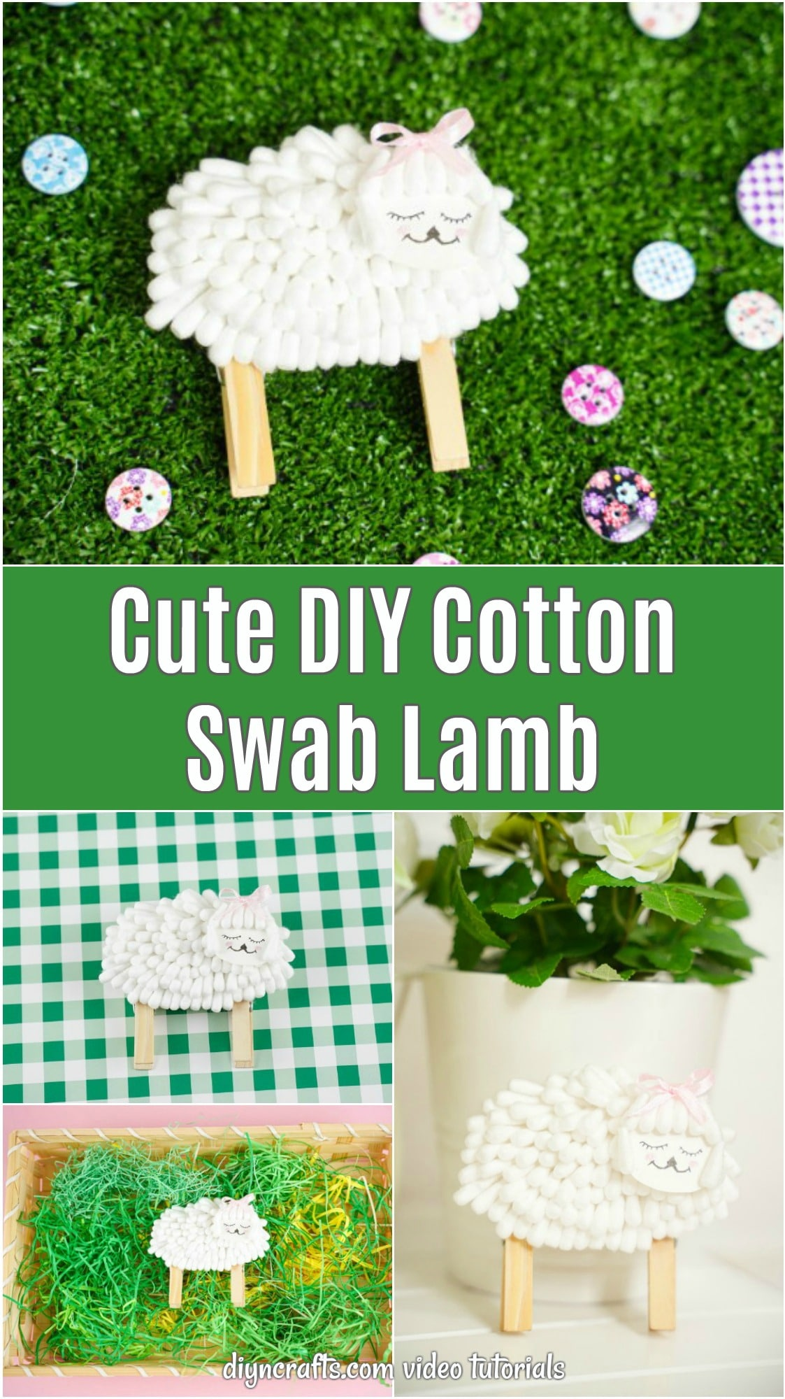 Cotton swab lamb pictures
