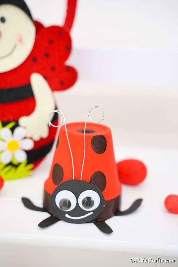 Ladybug flower pot on white shelf