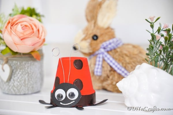 Ladybug planter on counter with bunny