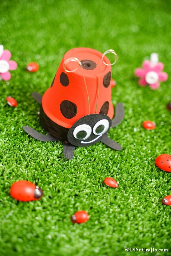 Ladybug flower pot on grass with mini lady bug rocks