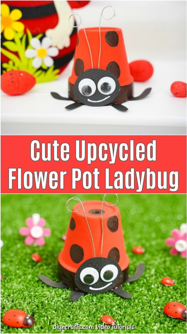 Flower pot ladybug collage