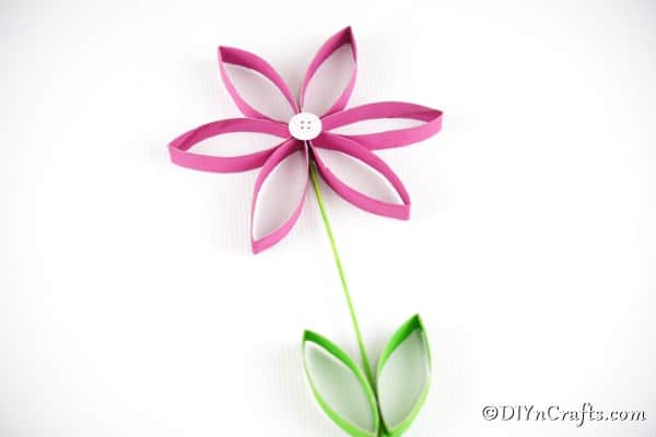 Pink paper roll flower on white surface