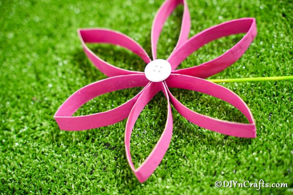Paper roll flower on grass