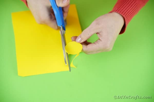 Cutting out circle for chicken hed