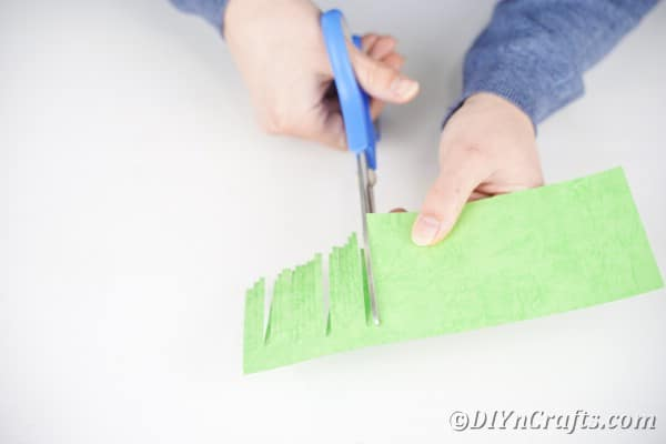 Cutting slices in green paper