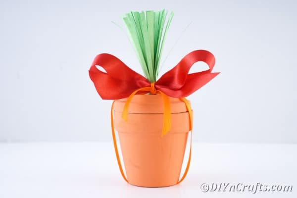 Carrot flower pot in front of white background