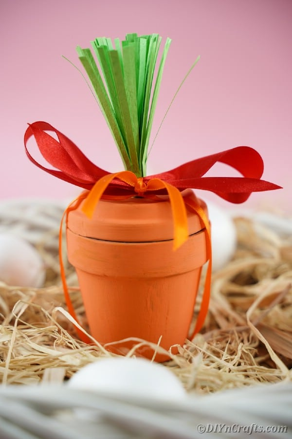 Flower pot carrot on hay with red ribbon