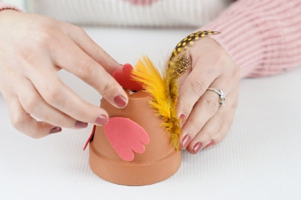 Adding feathers to flower pot chicken
