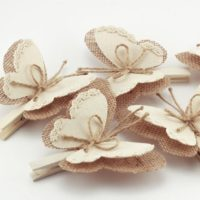 Set of 5 Butterfly Wings Clothes Pins,