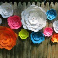 Giant Paper Flowers Kit