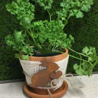 Farm Style Clay Pot With Rusty Bunny - Country French Style
