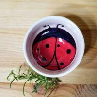 Ladybug Ceramic Bowl
